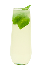 The Albahaca Sour cocktail recipe is made from Chilean pisco, basil, lime juice, simple syrup and club soda, and served over ice in a highball glass.