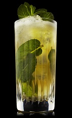 The Apes and Apples drink recipe blends the flavors of Monkey Shoulder scotch, mint and apple juice, and served over ice in a highball glass.