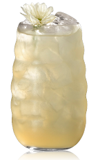 The Aveja Reina is made from Bacardi rum, vanilla liqueur, honey and lemon juice, and served over ice in a highball glass.