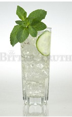 The Kate Cocktail is an enjoyable clear cocktail made from Old Tom gin, elderflower liqueur, champagne, mint, cucumber, lime and club soda, and served over ice in a collins or highball glass.