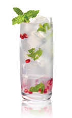 The White Pomegranate Mojito is a variation on the classic Mojito drink. Made from Stoli White Pomegranik vodka, lime juice, agave nectar and mint leaves, and served over ice in a highball glass.