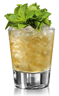 The Bacardi 8 Rum Julep is a variation of the classic Mint Julep drink, perfect for a Kentucky Derby party. An orange drink, made form Bacardi rum, mint, simple syrup and bitters, and served over ice in a rocks glass.