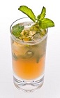 The Brazilian Julep drink recipe is what happens when cachaca meets mint south of the Equator, but keeping enough of a Southern US tradition to qualify it as a Kentucky Derby equivalent cocktail. Made from Leblon cachaca, Southern Comfort, lime juice, simple syrup, mint and club soda, and served over ice in a highball glass.