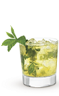 The Citrus Mojito Cruzan drink recipe is a fruity variation of the classic Mojito drink recipe. Made from Cruzan citrus rum, lime, mint, sugar and club soda, and served over ice in a rocks glass.