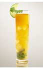 The Criollo cocktail recipe is a spicy little thing made from Flor de Cana rum, key lime juice, mango, agave nectar, cilantro and cayenne pepper, and served over ice in a Collins glass.