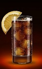The Jager Tonic drink recipe is made from Jagermeister, tonic water and orange, and served over ice in a highball glass.