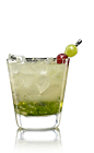 The Lucid Cooler drink recipe is made from Lucid absinthe, St-Germain elderflower liqueur, simple syrup, lime juice, ginger ale, basil and grapes, and served over crushed ice in a rocks glass.