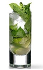 The Martin Miller's Mojito is a gin variant of the classic Mojito drink. A green colored drink made from Martin Miller's gin, lime, simple syrup, mint and club soda, and served over ice in a highball glass.
