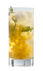 The Pisco Papaya Infusion drink recipe is an exciting fruity cocktail. Made from Chilean pisco, papaya, mint, lemon juice and tonic water, and served over ice in a highball glass.