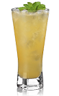 The Scorpion is an orange drink made from Bacardi rum, cognac, orange juice, orgeat syrup and lemon juice, and served over ice in a highball glass.