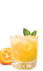 The Triple Orange Caipirinha combines Italian and Brazilian flavors into a traditional Brazilian drink recipe. An orange colored cocktail made from Gran Gala Triple Orange liqueur, Cachaca 51, kumquats, lime and basil, and served in a rocks glass over ice.