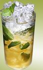 When you get tired of a plain old Mojito cocktail, try this cognac-based variation. The Xante Mojito drink recipe is made from Xante cognac, mint, lime, simple syrup and club soda, and served over ice in a highball glass.