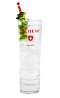 When you want an excellent drink that is easy to make, reach for the Xellent Club Soda. A clear colored cocktail made from Xellent vodka, club soda and cucumber, and served over ice in a Collins or highball glass.