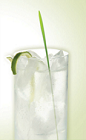 The Zu and Tonic drink recipe trumps the classic Gin and Tonic by blending Zubrowka Bison Grass vodka, with good quality tonic water, and served over ice in a Collins glass garnish with a lime twist and a blade of grass.